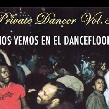 private dancer 5 valparaiso